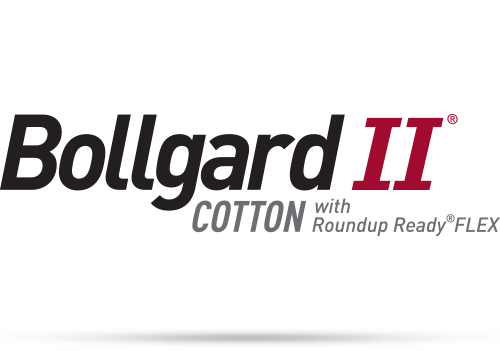 Bollgard II Cotton with Roundup Ready FLEX